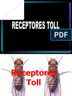 Receptores Toll