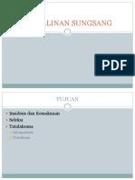Sungsang Indo