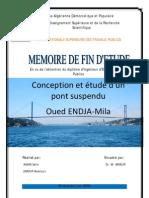Conception et étude dun pont Suspendu