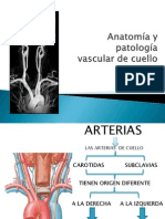Anatomia y Patologia Vascular de Cuello