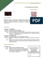 Curriculum Vitae 3 Combinado
