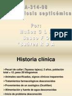 Caso de Pateurelosis (Simposio)