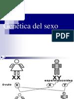 Genetica Del Sexo