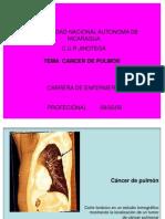 Presentación DEL CANCER DEL PULMON 2009 1
