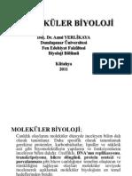 A.YerlikayaMolekülerBiyoloji2011 (sy 68 den başla).pdf
