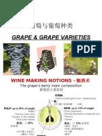 Grape & Grape Varieties