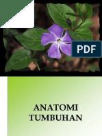 Anatomi Tumbuhan referensi