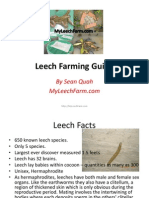 Leech farm Guide