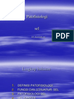 Patofisiologi Sel