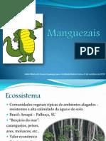 Manguezais (1)