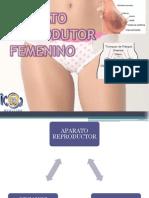 APARATO REPRODUTOR FEMENINO.pptx
