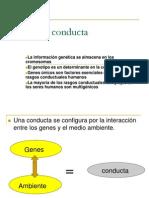 genesyconducta-111201221142-phpapp01