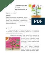 Webquest o Busqueda Web Con Correcciones-1 (2)
