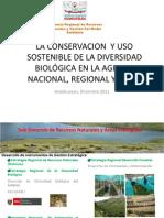 Biodiversidad Huancavelica