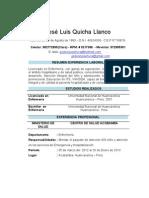 Curriculum Vitae Jose Luis Quicha Llanco