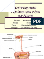 fisiologa-digestiva-1