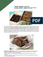 Modélisme ferroviaire à l'échelle HO. Atelier de confection de décor végétal.  Par Ph. Vépierre. 2013