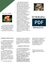 Ecografia Fetala Buna