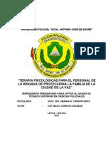 MONOGRAFIA_2012_POLICIA.docx