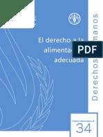 Derecho a la alimentación -ONU