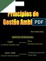 Princípios de Gestão Ambiental.ppt