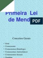 Leis Mendel Licenbio2012