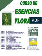 Esencias Florales p
