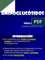 AMINOGLUCÓSIDOS+paula
