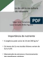 Deficiência de cálcio na cultura do rabanete