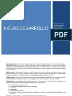 Taller de Neurodesarrollo