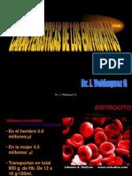 2011 3eritrocitoss