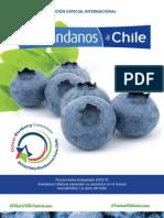 Arandanos Chile e