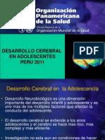 DEs Cerebral Peru