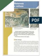 Aranha. Filosofando PDF