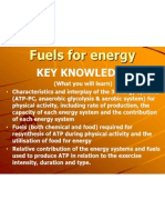 chapter 5 energy systems  food fuels