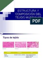 Estructura y Composicion Del Tejido Muscular