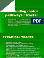 Lect 2 Descending Motor IMPROVED Pathways