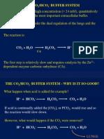Acid Base Phy