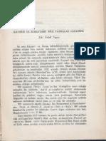 5-Zeki Velidi Togan - Kayseri ve Bursa'daki Bazı Yazmalar Hakkında