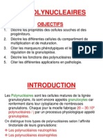 Les Polynucleaires