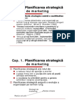 Planul Strategic de Marketing - Sinteza