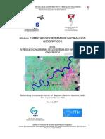 01. Capítulo1 Introduction SIG 2013.pdf