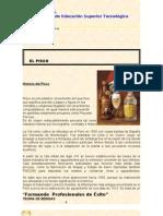 Teoria de Bebidas El Pisco (1)
