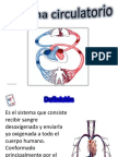 Sistema circulatorio dtd.pptx