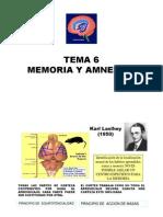 Memoria y amnesias.