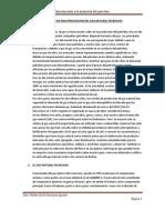 PROYECTO DE INDUSTRILIZACION DEL GAS NATURAL EN BOLIVIA.docx