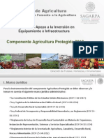 AGRICULTURA PROTEGIDA v3.pdf