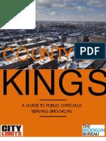 Brooklyn Citizens' Guide