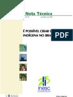 NT. 94 - Partido Indigenista No Brasil
