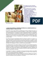 Desplazamiento Forzado en Colombia